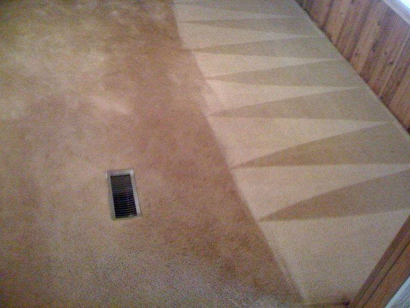Zerorez The Clean Green Carpet Cleaning Franchise
