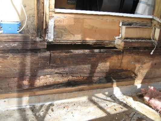 rot damage repair