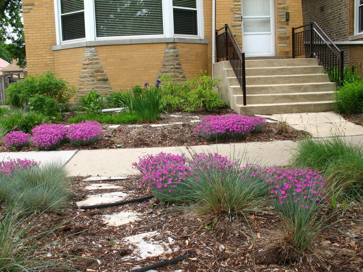 Residential Parkway Landscaping Ideas : Grounds for growth sustainable landscape design