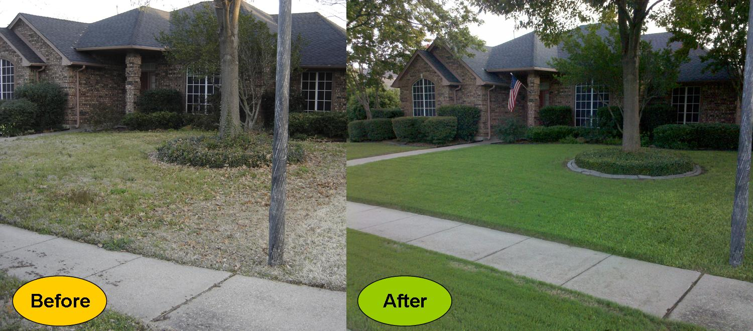 Lawn care companies autos post for Lawn treatment companies