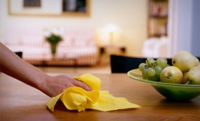 $95 for 3 Hours of Green House Cleaning!