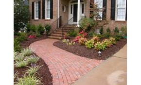 $70 for Landscape Design and Consultation!