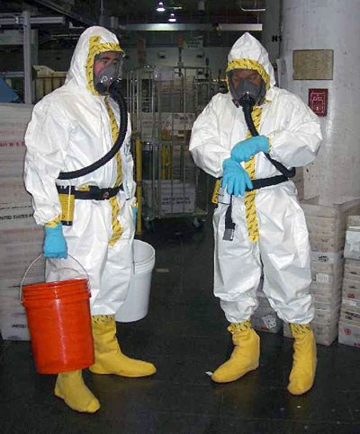 Mold and Radon Removal Services