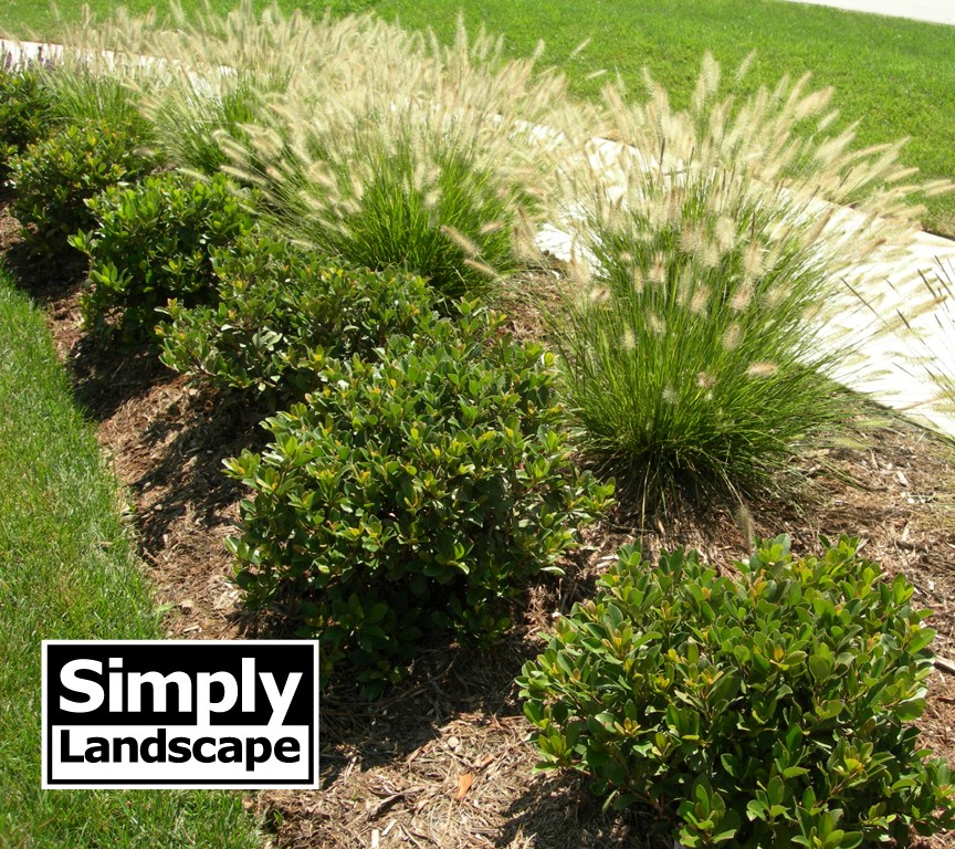 Simply landscape edmond ok 73012 angie 39 s list for Simply garden maintenance