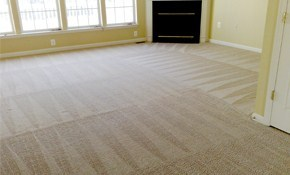 $102 for 3 Rooms of Carpet Cleaning