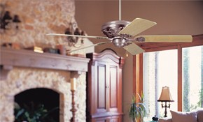 Only $99 for Ceiling Fan or Light Fixture...