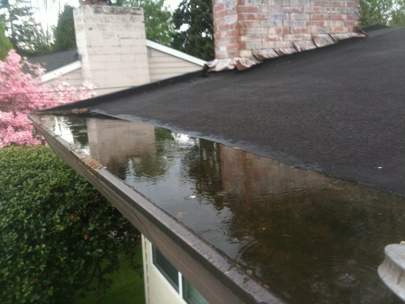 Aa Window And Gutter Cleaning Kirkland Wa 98033