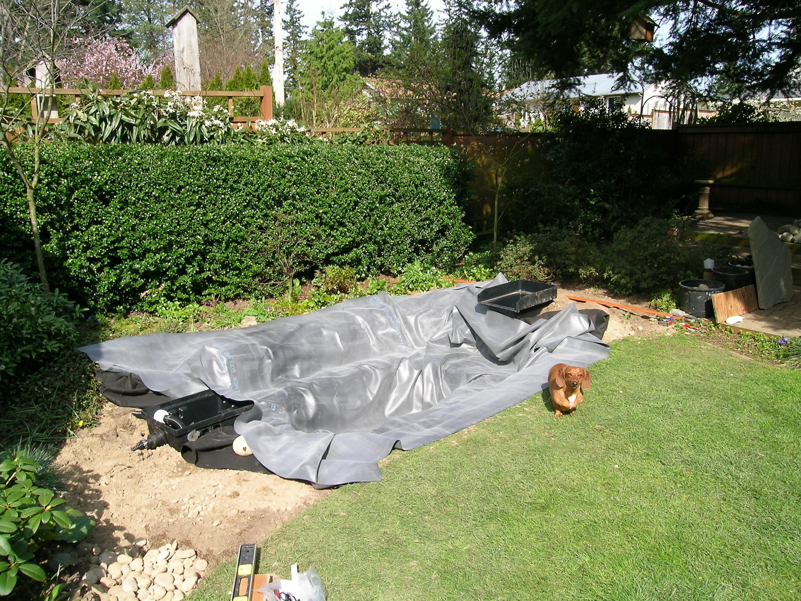 Do it yourself landscaping mountlake terrace wa 98043 for Do it yourself landscaping