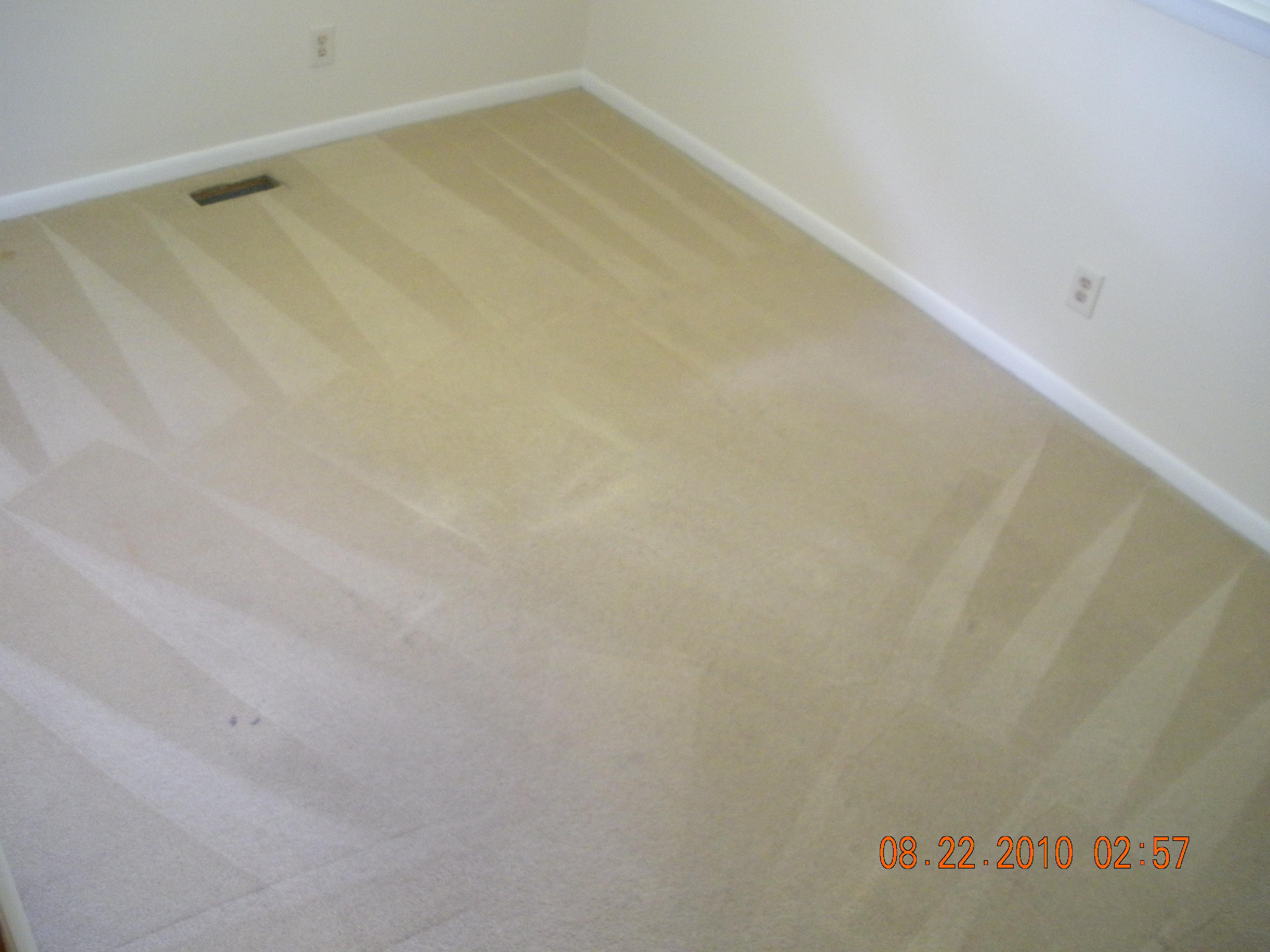 Healthy Carpet Cleaning Ann Arbor : Ann Arbor, MI 48109 : Angies List