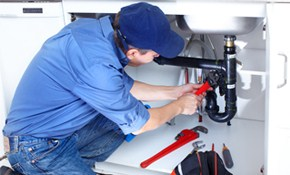 $100 for Whole House Plumbing Inspection!