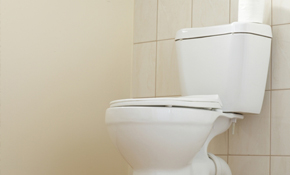 $39 for a Toilet Tune-Up and Home Plumbing...