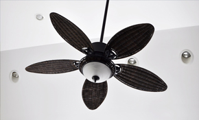 $100 Ceiling Fan Installation