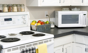 $270 for Deep Cleaning of Main Kitchen Appliances