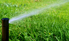 $53 for a Sprinkler System Service Call