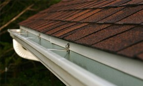 $125 for Whole House Gutter Cleaning