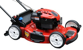 $95 for at Home Lawn Mower or Snow Blower...
