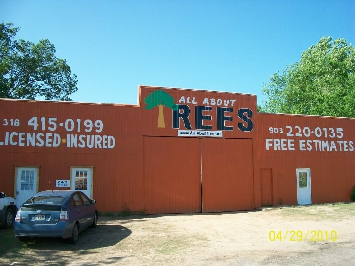 All About Trees Building