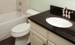 $90 for Toilet or Sink Install