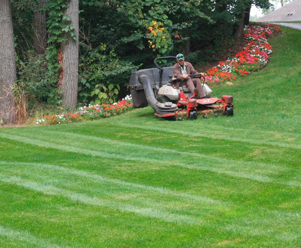 Everetts Landscape Management Inc Grand Rapids Mi 49508