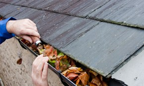 $125 Home Gutter Cleaning