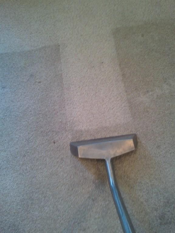 First Impressions Carpet Tile Amp Oriental Rug Winter