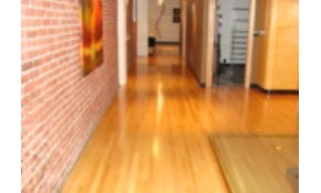 $150 for 300 sq. ft. of Hardwood Deep Cleaned