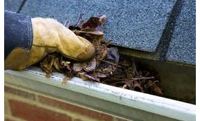 $160 for Whole House Gutter Cleaning
