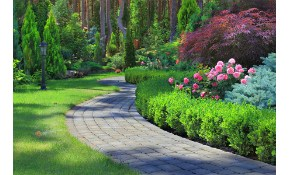 $111 for Complete Landscape Design and Consultation!