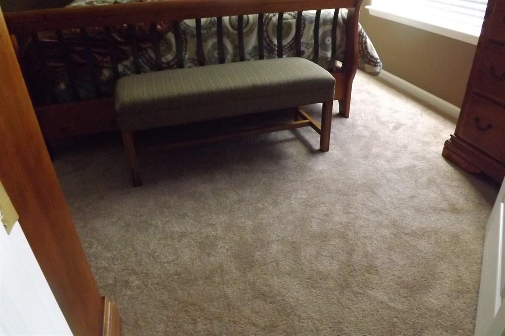 Smartstand Carpet