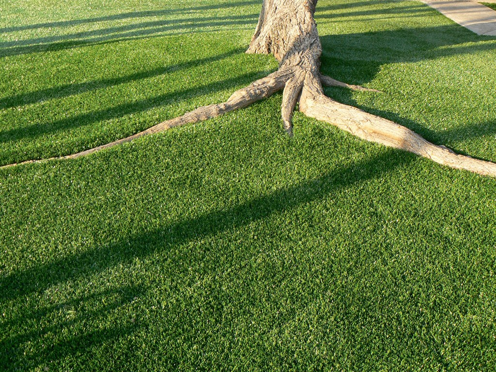 Artificial Grass For Backyard Reviews : Synthetic Grass Pros  Dallas, TX 75229  Angies List