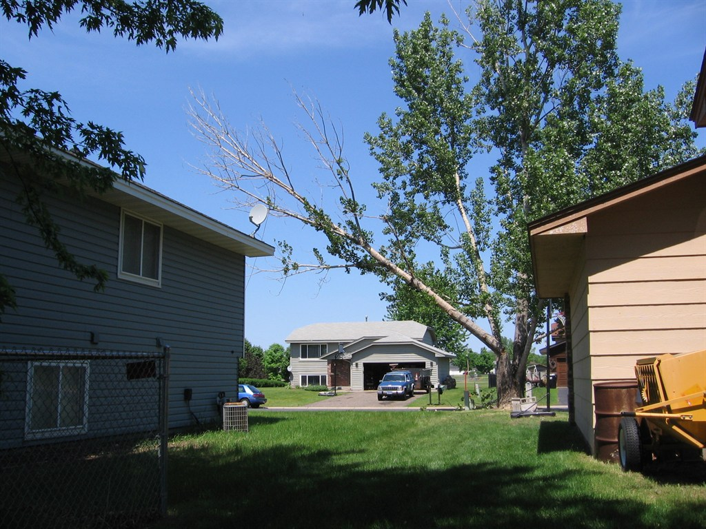 Living water tree service andover mn 55304 angies list for Home and landscape design andover mn