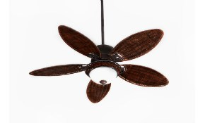$440 for 4 Ceiling Fans Installed