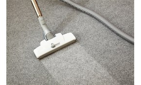 Whole House Carpet Cleaning & Sanitization...