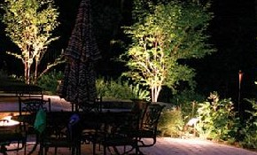 $49 for a Landscape Lighting Design and Consultation