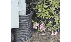 $185 for Hydro Jet Clearing of Rain Drain...