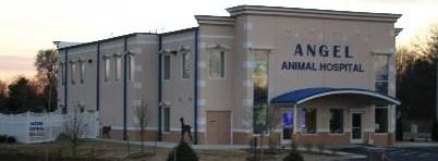 Angel Animal Hospital