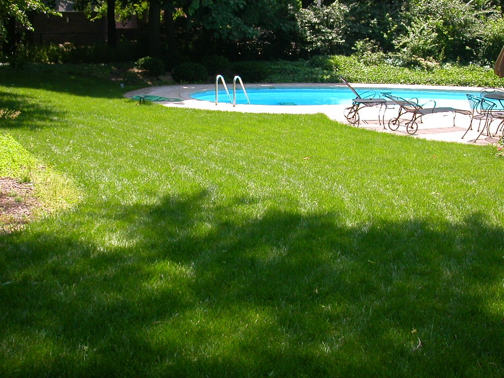 Good Nature Lawn Care Reviews