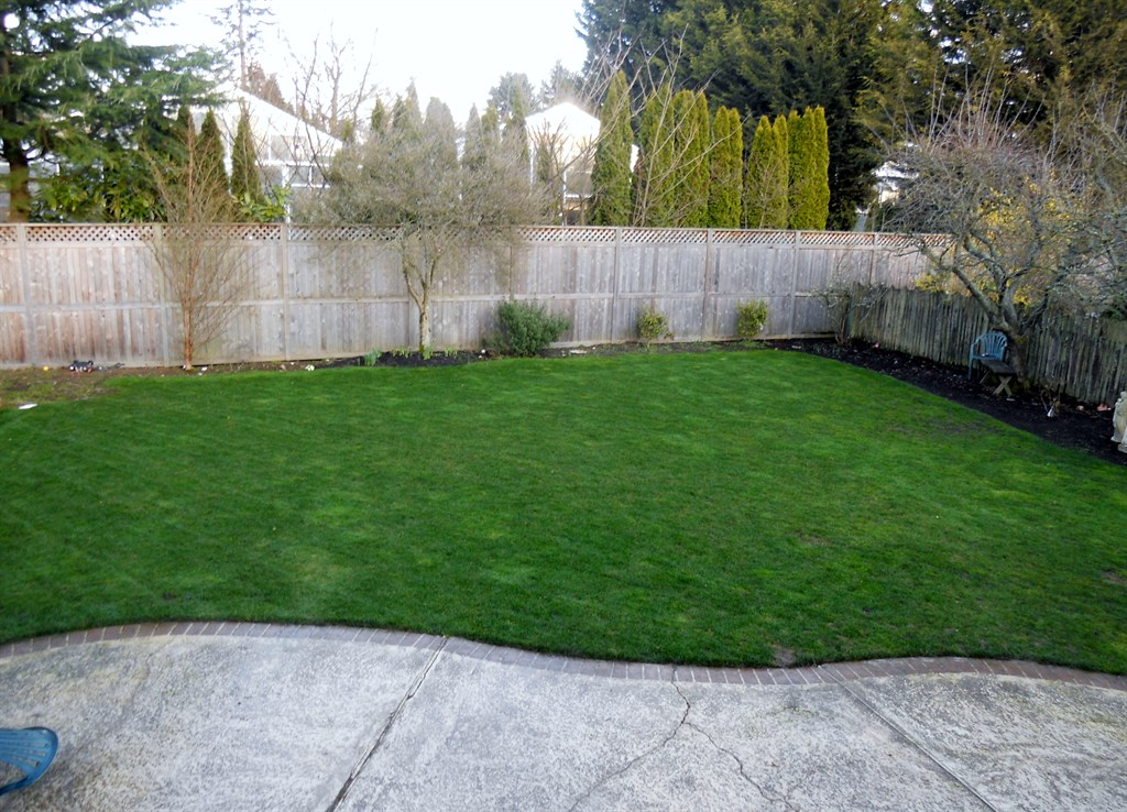 Van Hollebekes Landscape Maintenance Seattle WA