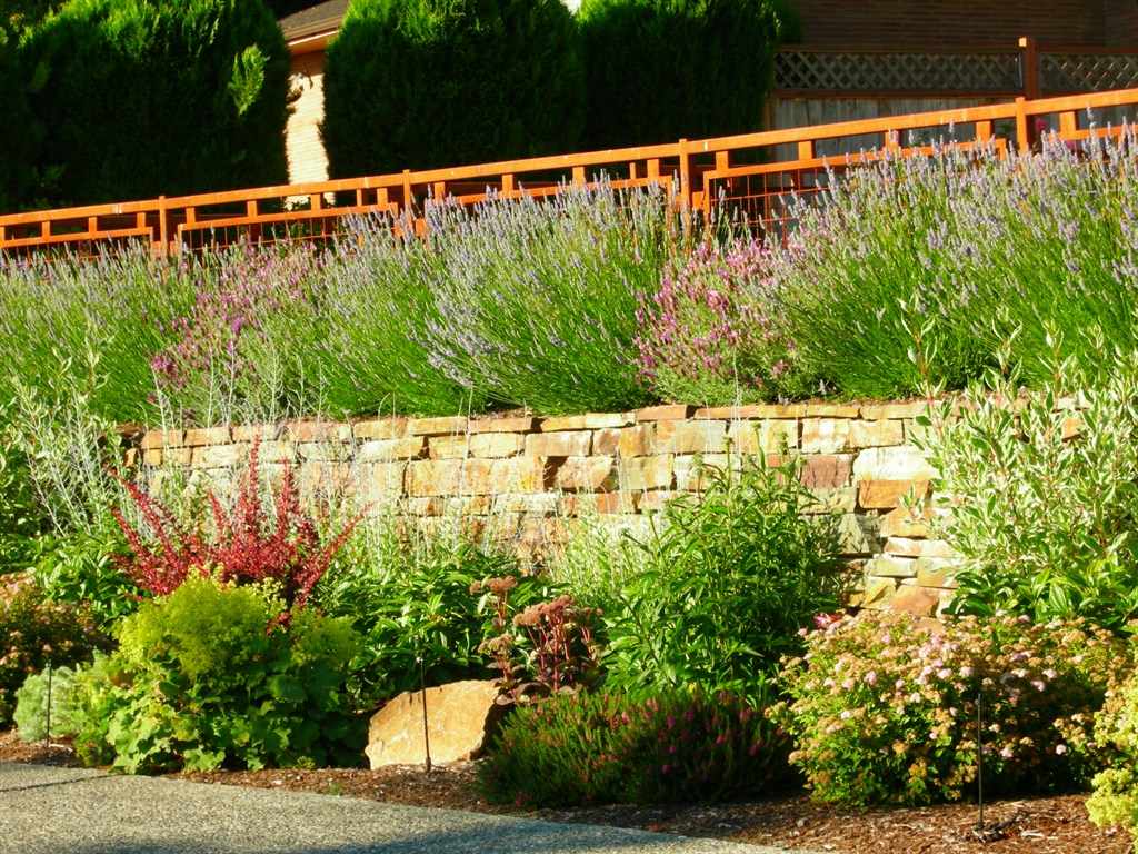 Corcoran Landscape Services Inc Seattle WA 98199