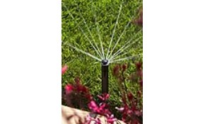 Sprinkler System Check Only $78!