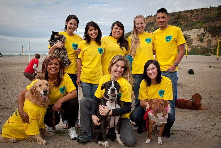 ABC Staff & Friends