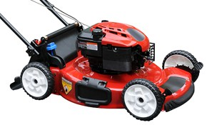 $60 for Lawn Mower or Snow Blower Tune-up