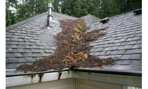 $197 for Full Roof Maintenance with Gutter...