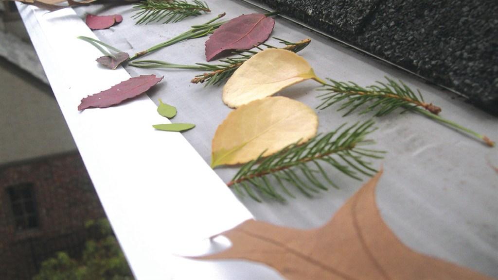 Leaf Filter North Inc Virginia Fredericksburg Va