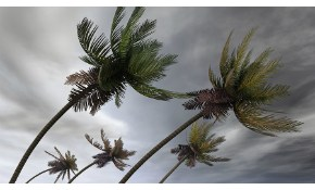 $50 for $100 Credit Toward Hurricane Shutters