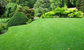 $130 for a Lawn Aeration Package for up to...