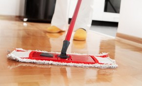 $250 for Full House Deep-Cleaning (up 9 Man-Hours)