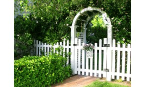 $25 for a Wood Fence Gate!