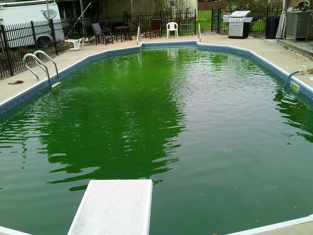 Endless Cleaning And Pool Service Mooresville Nc 28117