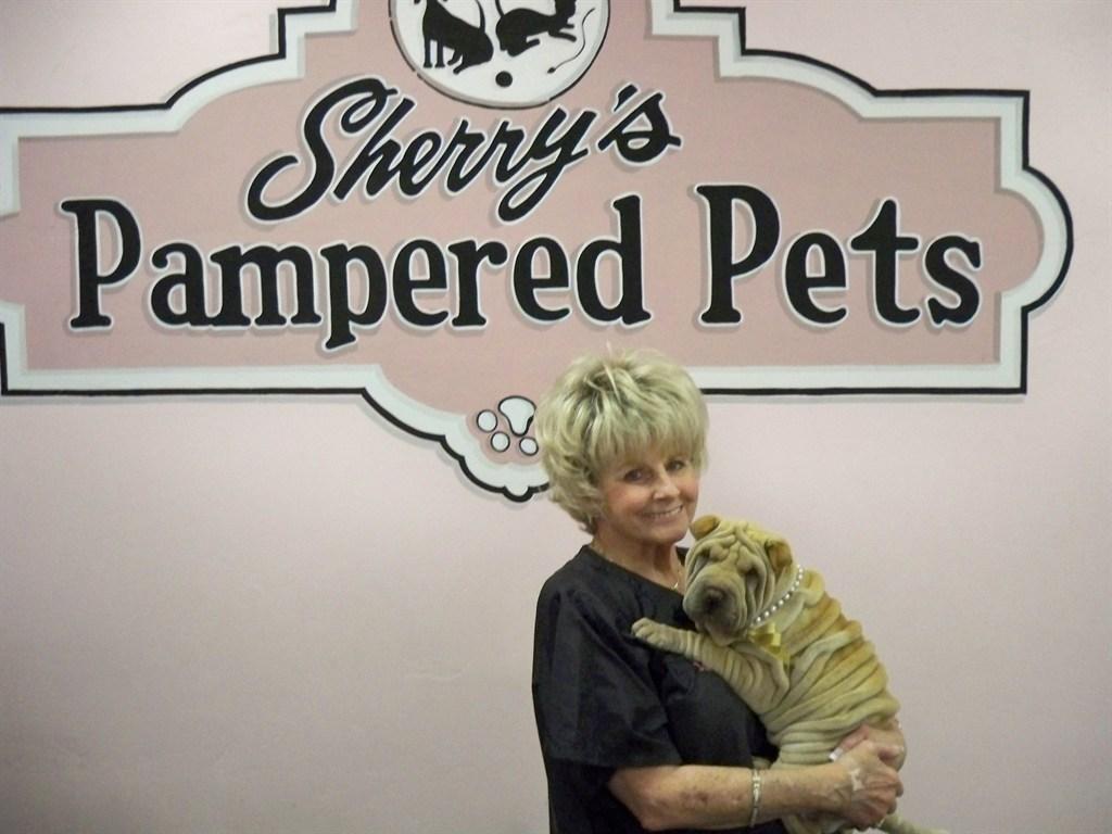 Sherry S Pampered Pets Phoenix Az 85024 Angies List
